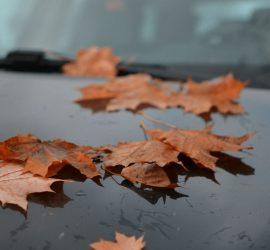 подготовка автомобиля к осени